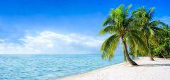 Toile Caraïbes 33x70cm