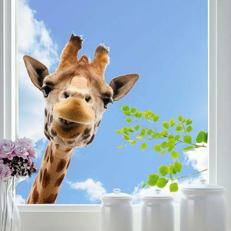 Sticker pour fenêtre Girafe