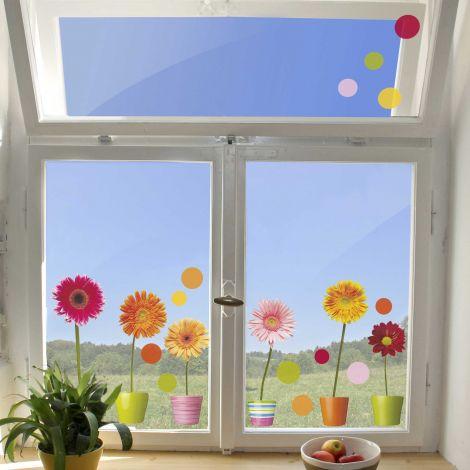 Stickers pour fenêtre Gerbera